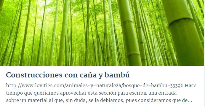 Construcciones caña y bambú.jpg